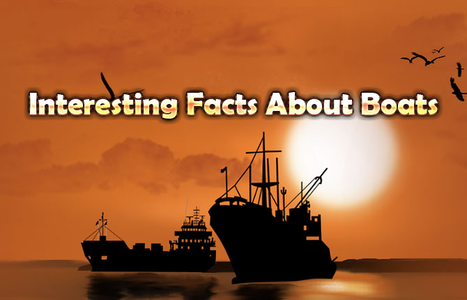 Interesting Facts About Boats